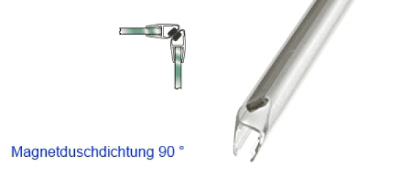 Magnetdichtung
